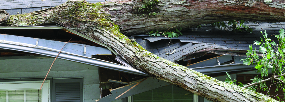 Storm Damage Repair Roofing